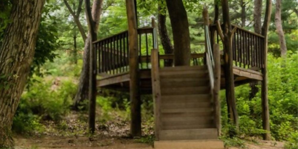 woodland green deck color
