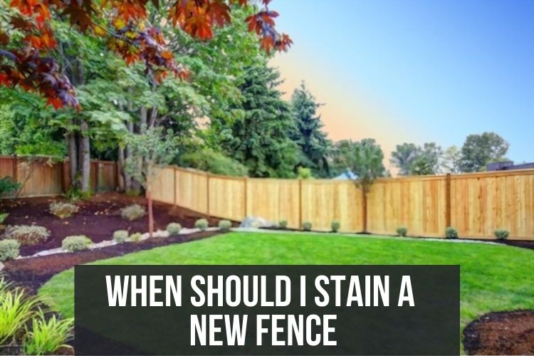 when should i stain a new fence