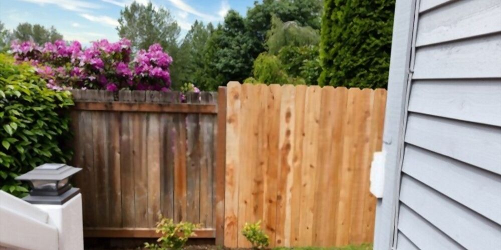 when to stain a cedar fence