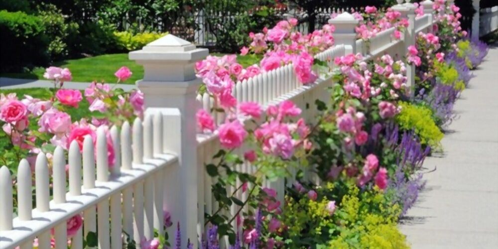 white fence yards color
